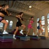 exercise, whole body vibration, study